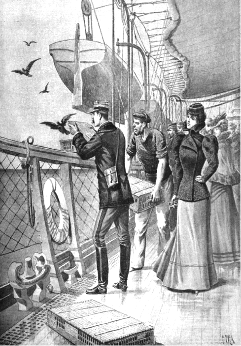 Попытка-передать-сообщение-с-помощью-почтовых-голубей