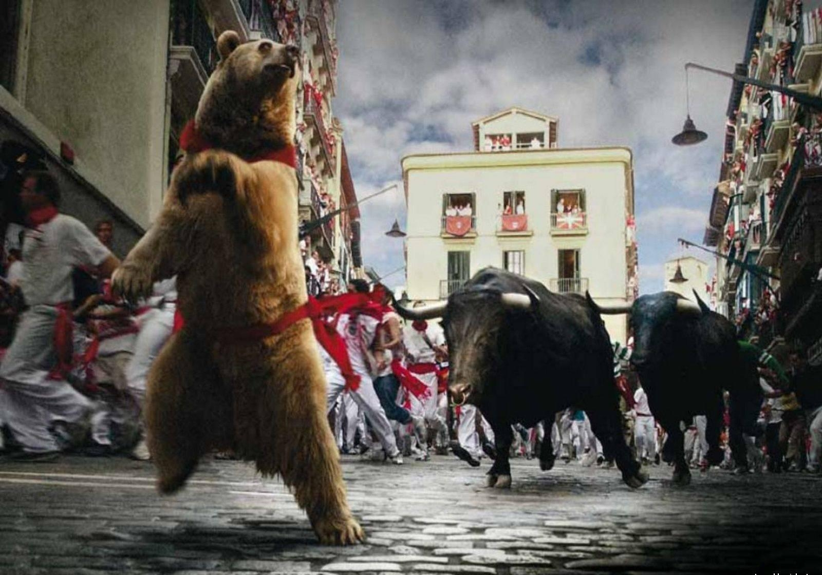 быки-и-медведи