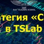 """<span class=""""response"""">Стратегия «CSBB» в TSLab</span><br/>"""